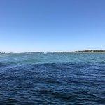 Photo of Salmon Bay