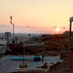 The Turtle Beach Resort (Ras al Hadd) Foto