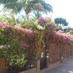 Photo de Restaurant Safari Beach