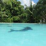 Photo de Leijay Resort