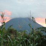 View of Arenal volcano from hotel grounds