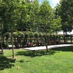 A long table under the pergola