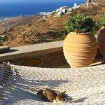 Φωτογραφία: Aeolis Tinos Suites