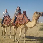 Camel ride Al Sahra