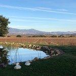 Photo de Stagecoach Wine Tours Santa Ynez