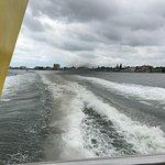 Dolphin Racer resmi