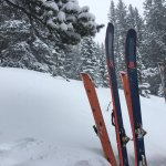 Skins and skis in the backcountry