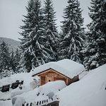 Photo de Hotel Rosalpina Dolomites