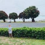 صورة فوتوغرافية لـ Panorama Motel