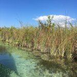 Private tour with Pepe Cuevas at the mangroves in Muyil.
