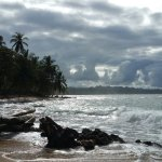 Foto de Cariblue Beach & Jungle Resort
