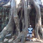 Nas raízes e ruínas de Ta Prohm (1)