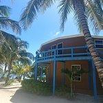 Foto de White Sands Cove Resort