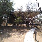 Foto di Greenfire Game Lodge