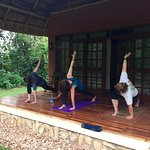 Yoga on the veranda of our room, with monkeys jumping in trees to see what the humans are up to.
