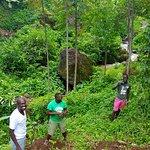 Planting trees near Wanale Hill in Mbale, Uganda
