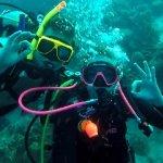 Photo of Dive Friends Bonaire