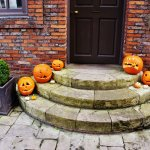 Cute (and scary!) pumpkins for Halloween weekend