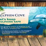 Dolphin Cove loved it.