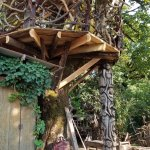"""Treehouse featured in """"Redwood Highway."""""""