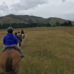 Horse trekking at the Mountain Valley Lodge