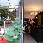 Photo of Bohemia Hotel Boutique