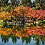 Foto de Nikka Yuko Japanese Garden