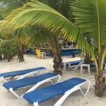 Foto de Negril Tree House Resort