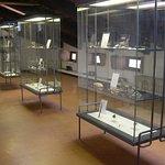 """Museo Civico """"D. Dal Lago"""" Photo"""