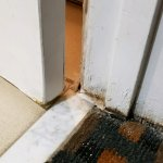 degradation on the bathroom door jamb, and all along the bottom of the door.