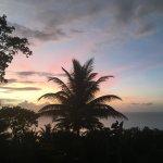 Photo de Nature's Paradise