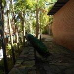 Photo of Expanzoo Expansion Centro Educativo Recreacional