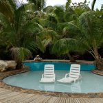 Pool - Xanadu Island Resort Photo