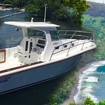 Take a tour on our Hamakua Coast/Seasonal Whale Watching boat tour!