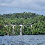 Honolii Bridge and Surf Spot ~Hilo