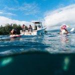 Snorkel Adventures with Hilo Ocean Adventures!
