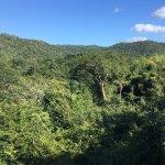 Photo of Belize Botanic Gardens
