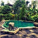 Photo of Villa Wastra
