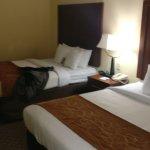 Comfort Suites Columbia Gateway Photo