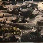 Foto de Mozzarella&Vino