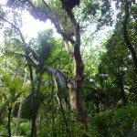 Photo of EcoZip Adventures
