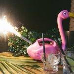 Flamingo Fireworks!