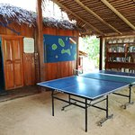 ping pong and library