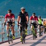 Mike Bike Tours