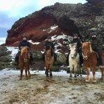 Photo of Viking Horses