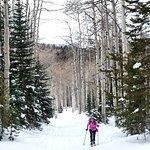 Skiing at Hahns Peak