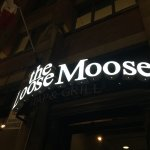 Loose Moose Photo
