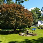 Enjoy relaxing with your favorite book in the solitude of our back yard and gardens.