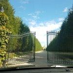 Oheka Castle Driveway