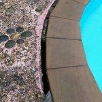 große Schlitze und Risse am Pool